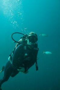 Koh Lanta Diving